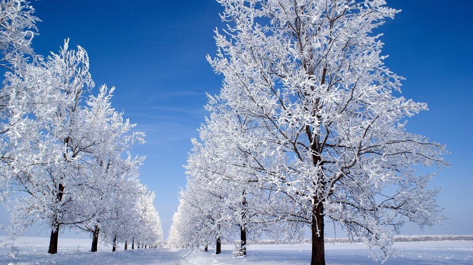 6974170-beautiful-winter-snow-hd-images